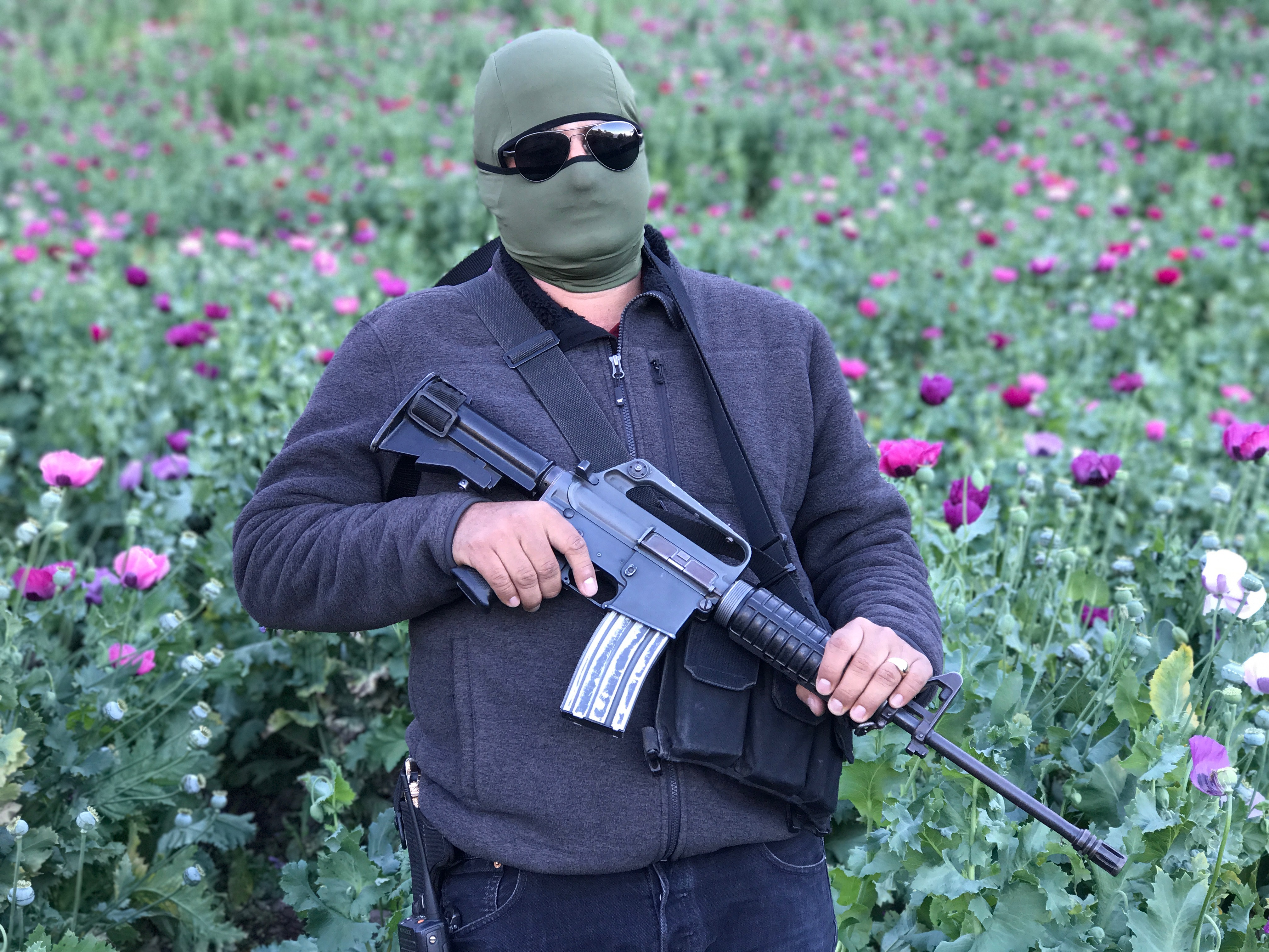We visited a hidden poppy field the Sinaloa Cartel uses to produce